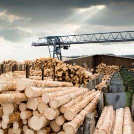 Для деревообрабатывающей промышленности