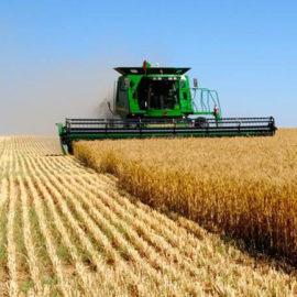 Для сельскохозяйственной промышленности